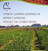 Cover image Chinese-Women-Working-in-Market-Gardens-across-the-Sydney-Basin-FINAL-REPORT-2006